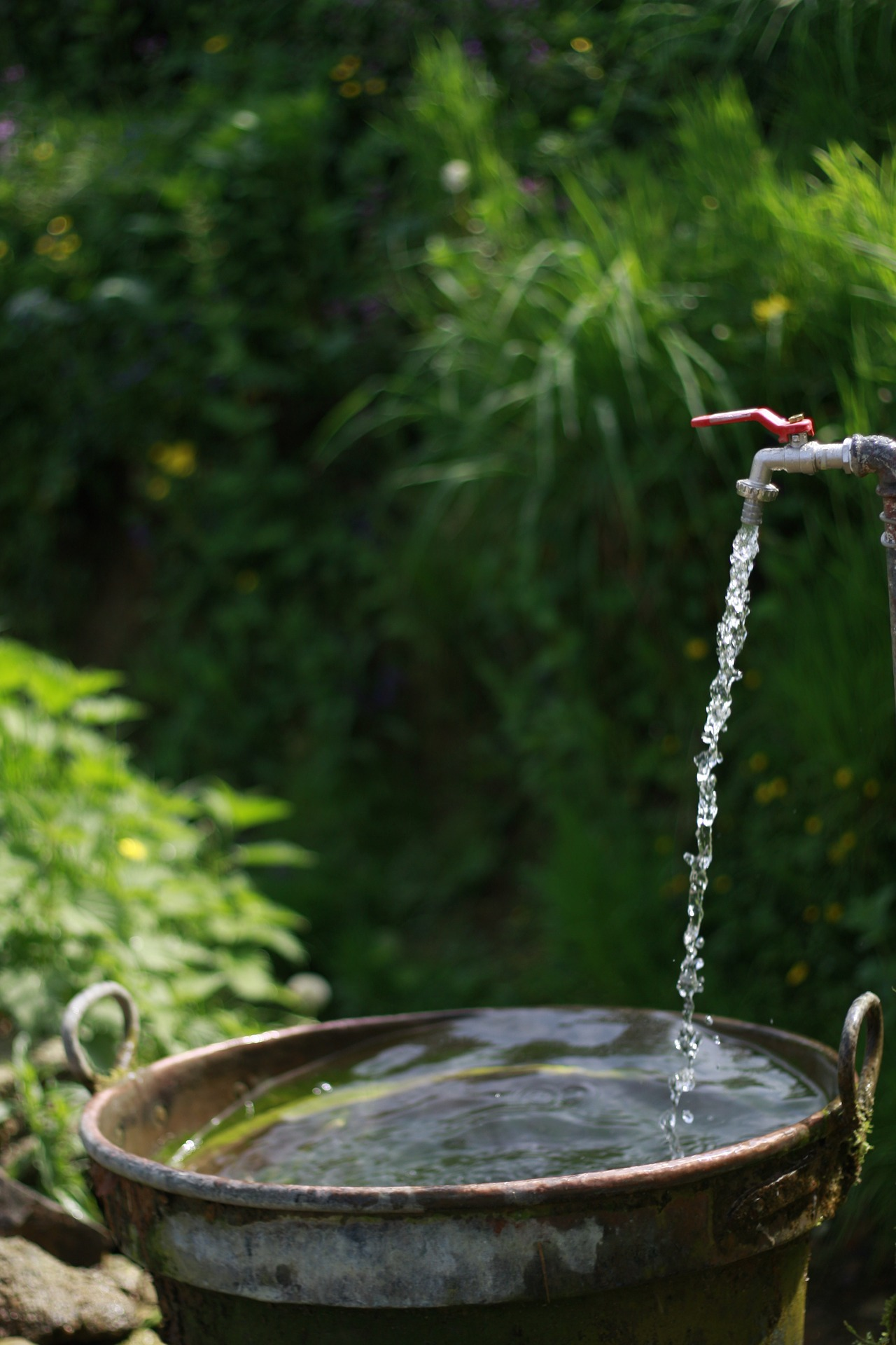 How your lawn chemicals are hurting the water supply