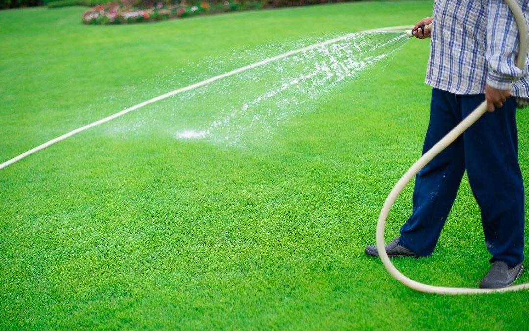 Quick Maintenance Tips to Help Keep Synthetic Grass Looking Amazing