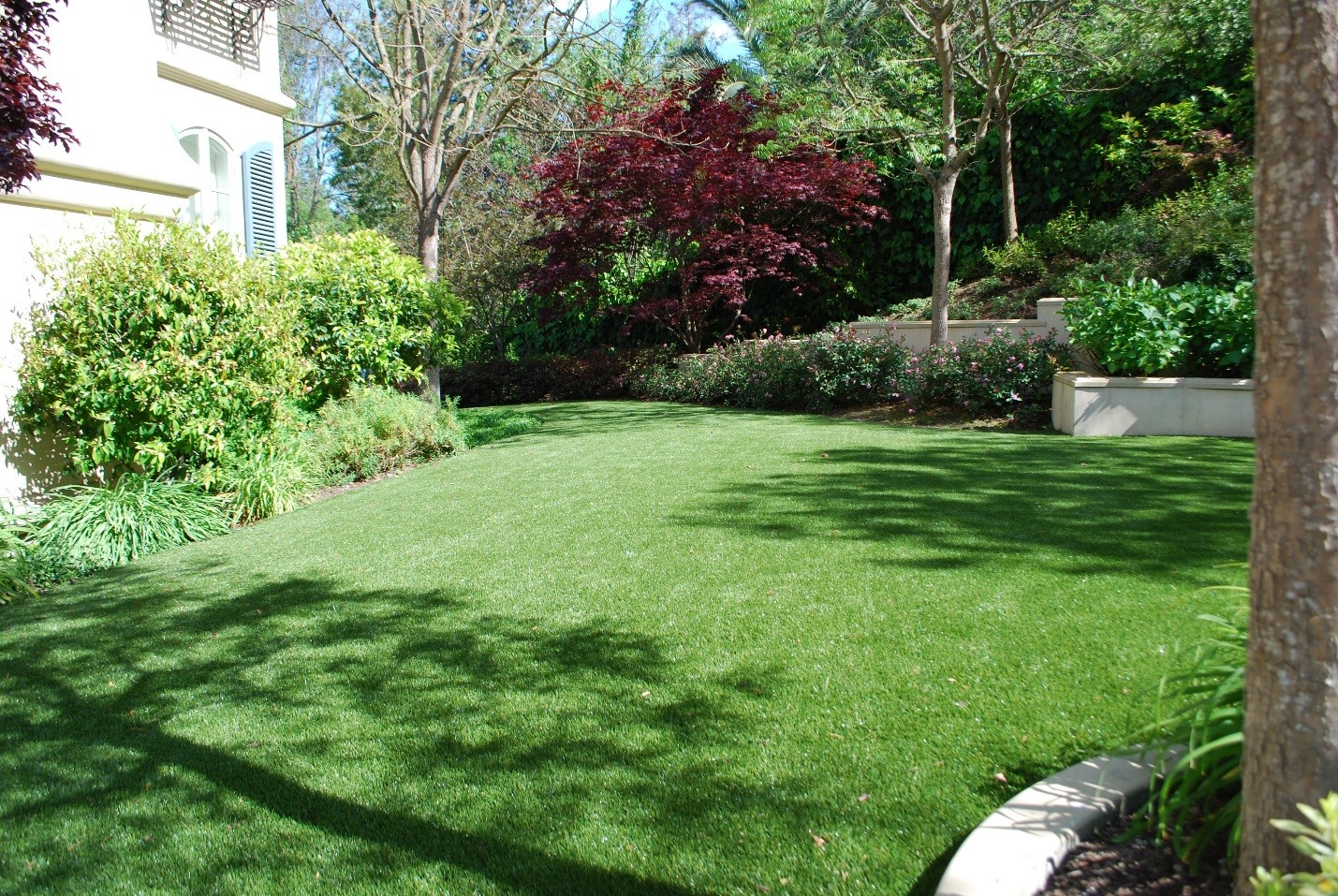 What's So Great About Artificial Turf? Low Maintenance & Eco-Friendly