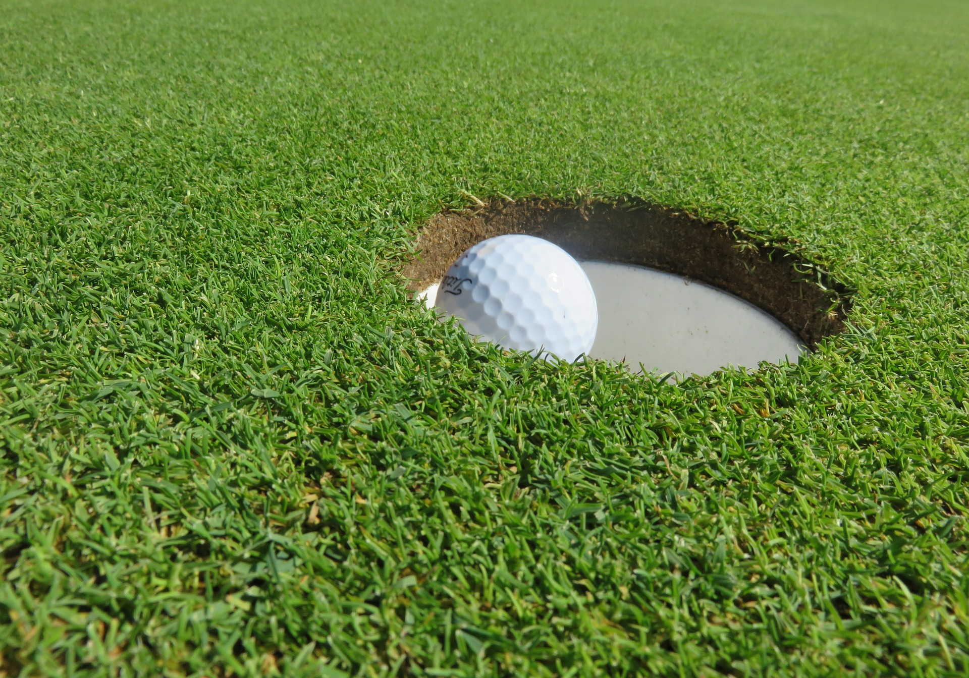 Why Install an Artificial Putting Green in Your Backyard?