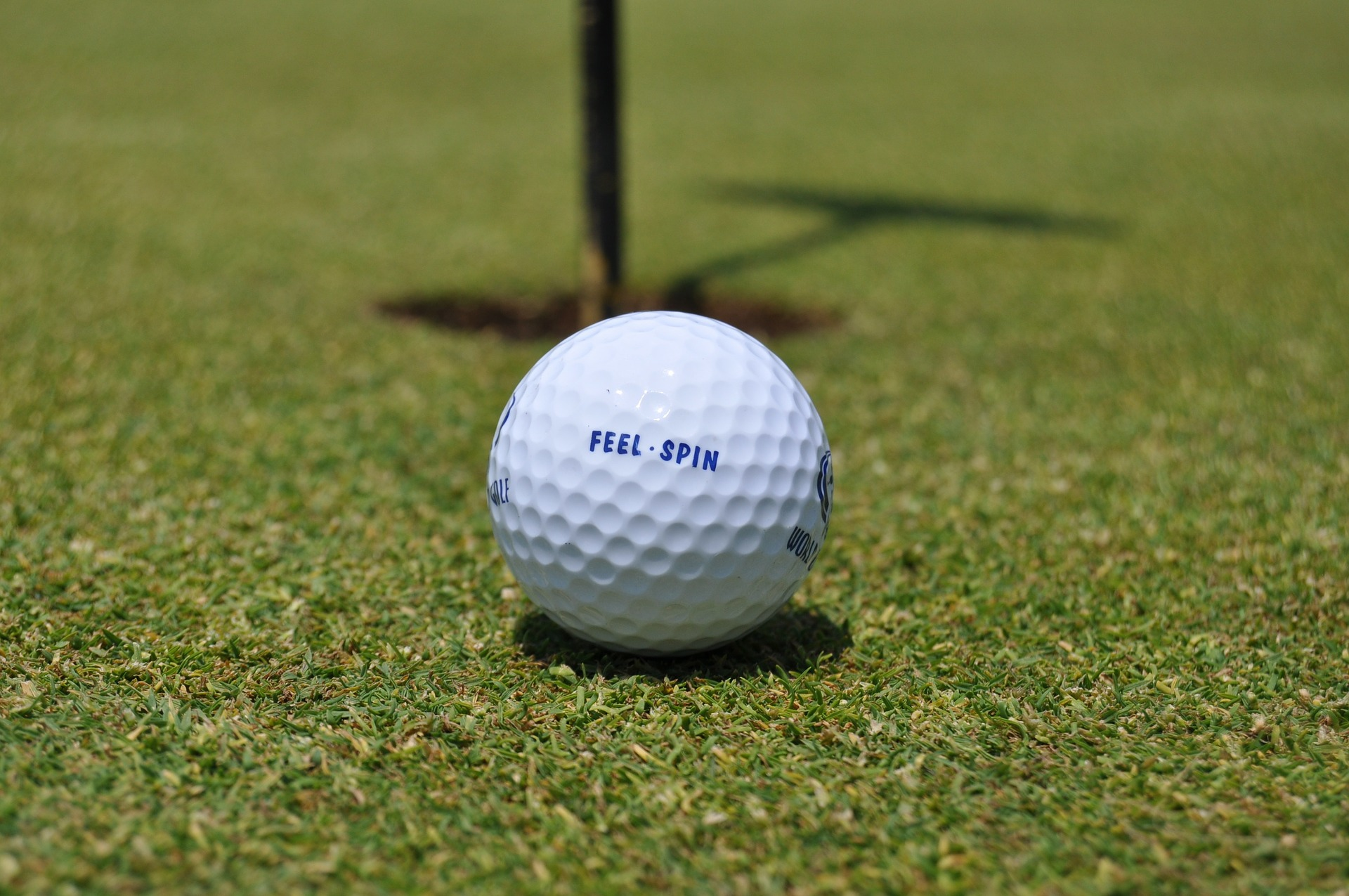 8 Signs You Should Install an Artificial Putting Green