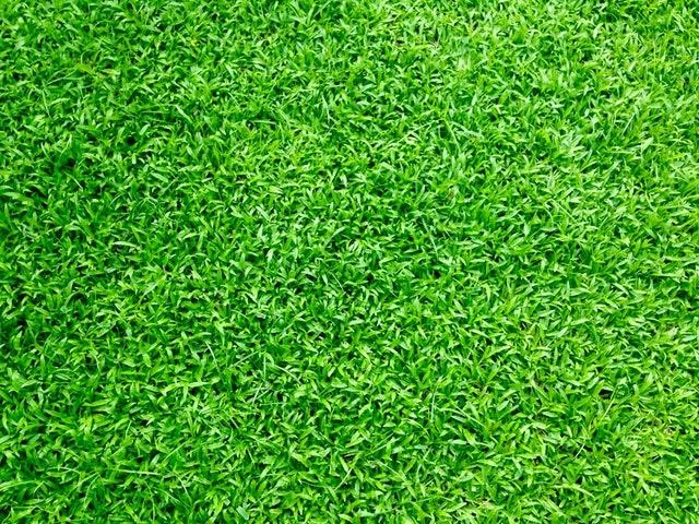 Understanding the Benefits of Artificial Grass