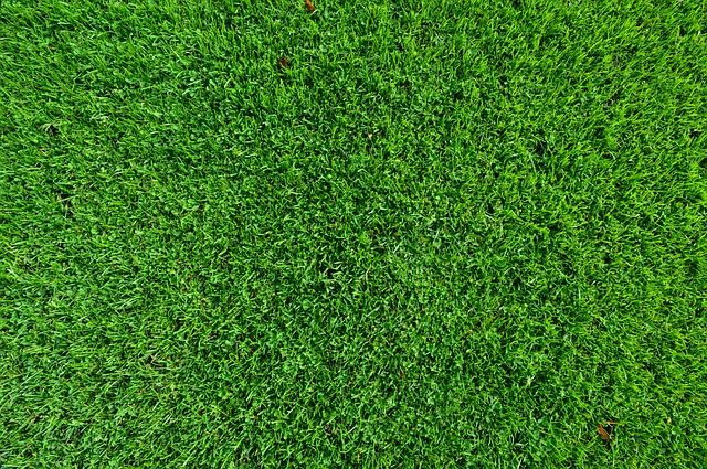 4 Ways You Can Save Money by Having Artificial Turf Installed on Your Property - image 2-compressor on https://www.sunburstlandscaping.com