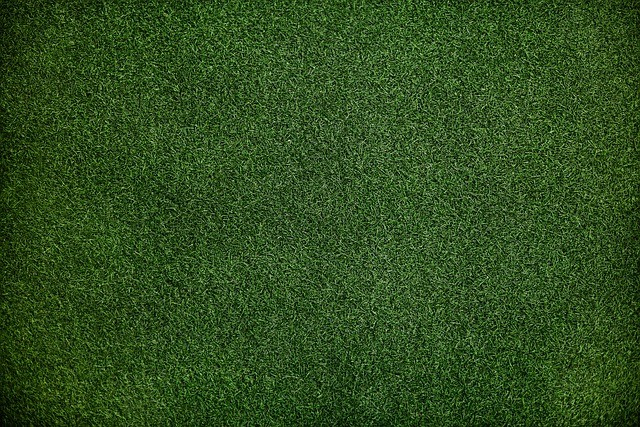 Raise Your Golf Game by Installing Artificial Grass in Your Backyard