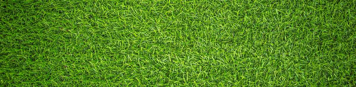 the cost of artificial grass