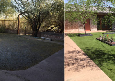 Full Backyard transformation