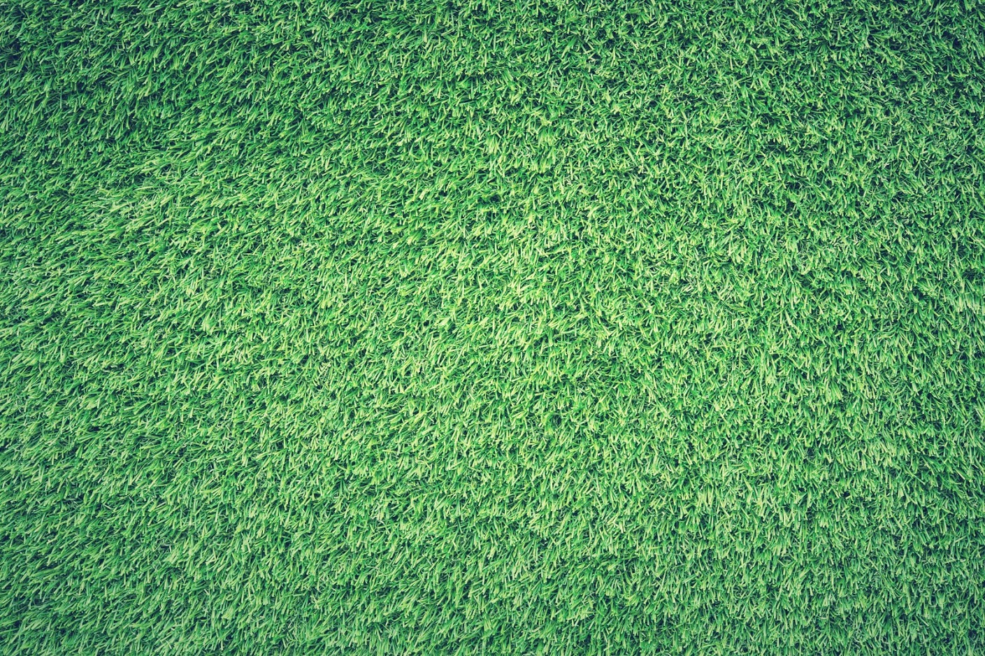 Benefits of an Artificial Turf Lawn for Your Backyard - image  on https://www.sunburstlandscaping.com
