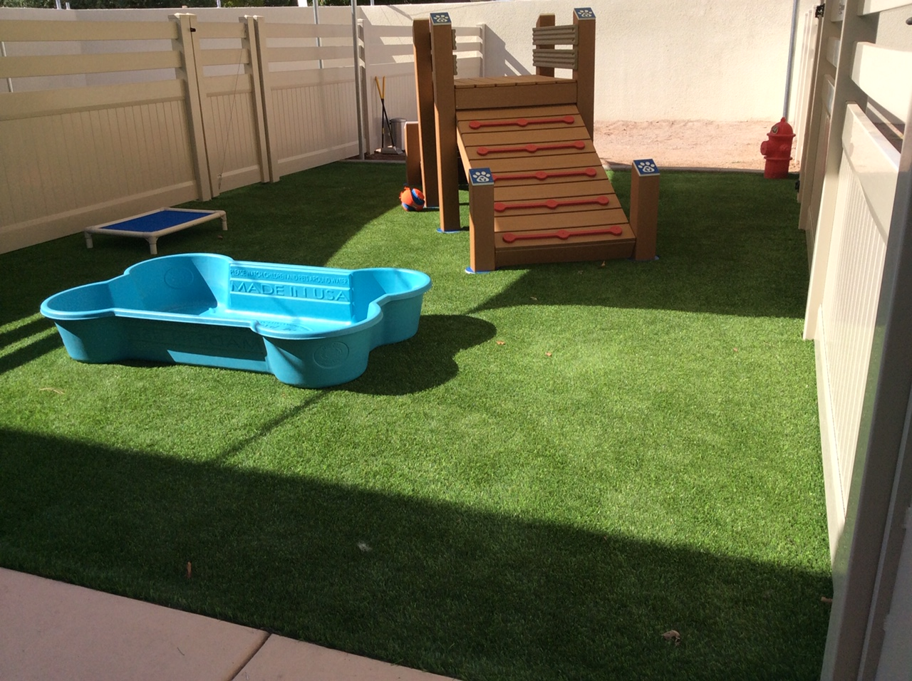 Dogs love artificial grass